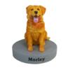 Customizable Pet Bobblehead